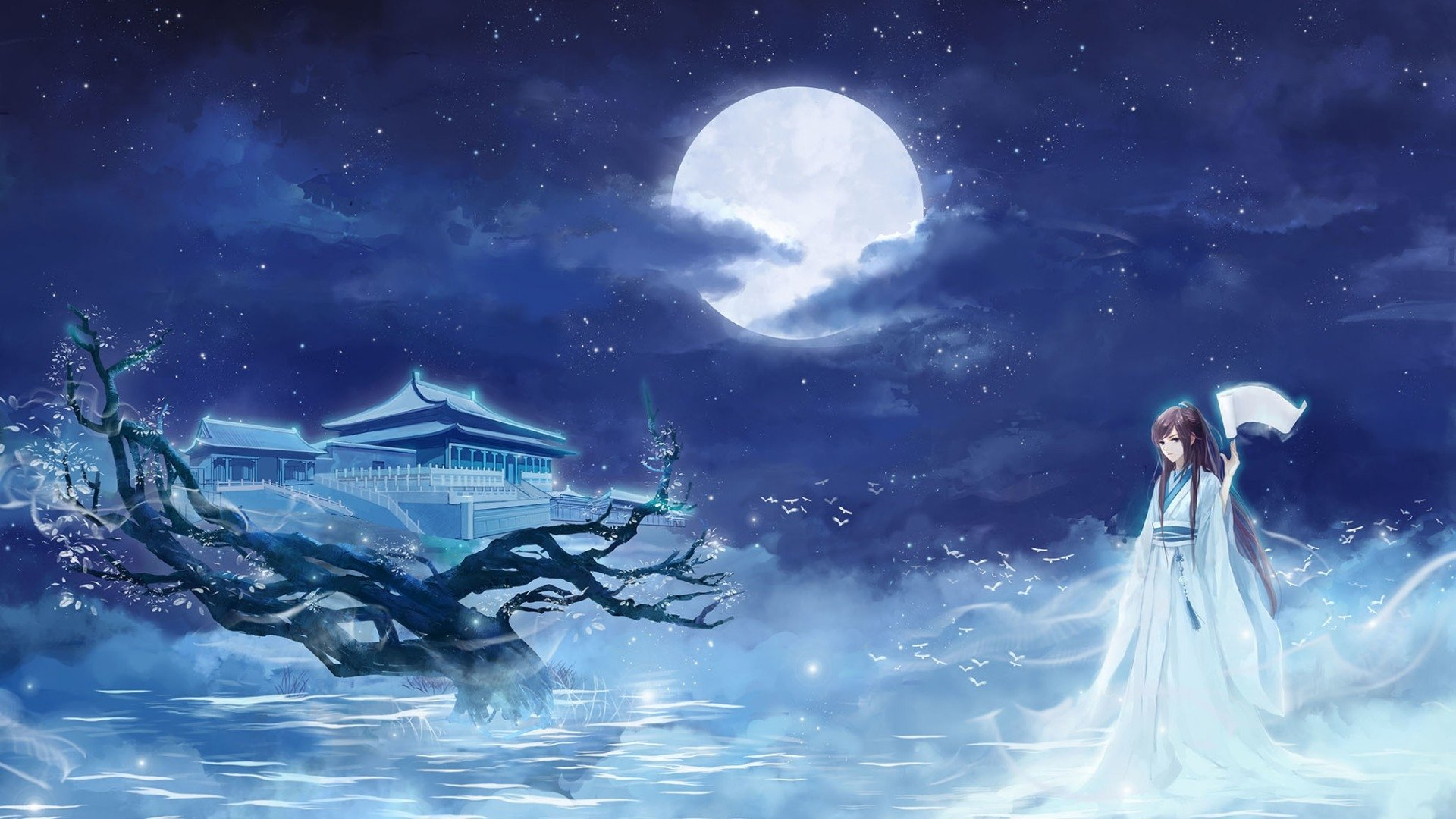 Anime Girl On Full Moon Nigjt Hd Wallpaper Background Image 1920x1080 Id 1000837 Wallpaper Abyss