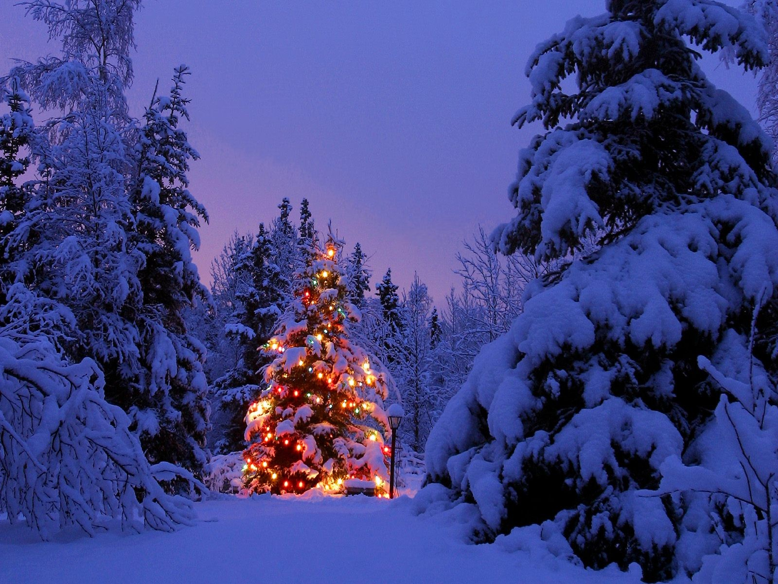 Christmas wallpaper and background image id
