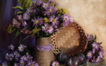 Photography - Still Life Wallpapers and Backgrounds ID : 102502