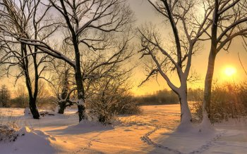 Earth - Winter Wallpapers and Backgrounds ID : 102582