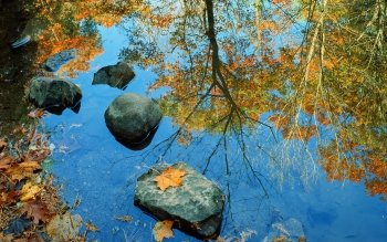 Earth - Reflection Wallpapers and Backgrounds ID : 10420