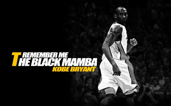 Sports Kobe Bryant Basketball NBA Los Angeles Lakers Fond d'écran HD | Image
