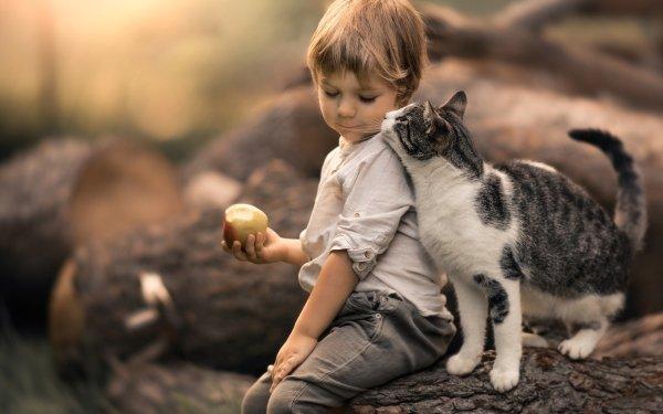 Photography Child Cat Apple Little Boy Depth Of Field Pet HD Wallpaper | Background Image