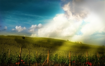 CGI - Landschap Wallpapers and Backgrounds ID : 107932
