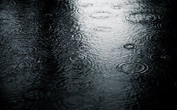 Fotografie - Rain Wallpapers and Backgrounds ID : 108102