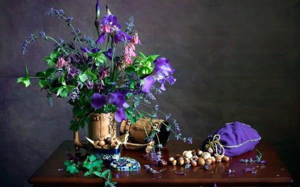 Photography Still Life Nut Hazelnut Flower Purple Flower HD Wallpaper | Background Image