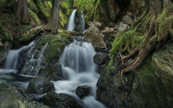 Earth Waterfall Waterfalls Stream Rock Roots HD Wallpaper | Background Image