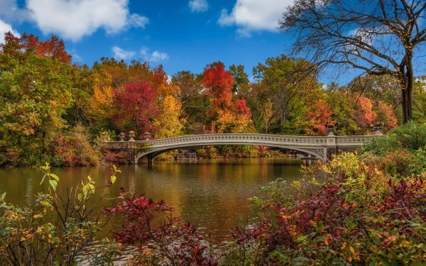 Man Made Central Park Fall Bridge New York USA HD Wallpaper   Background Image