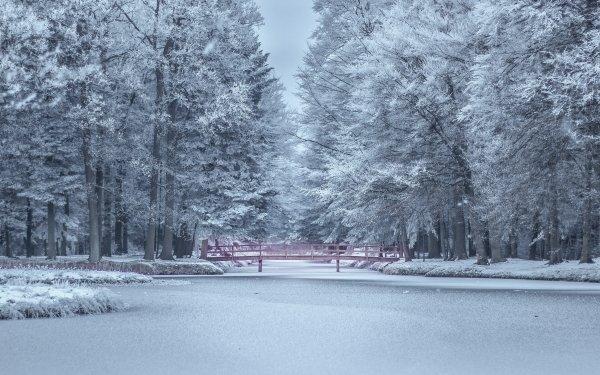 Photography Winter Frost Snow Pond Park Bridge HD Wallpaper | Background Image