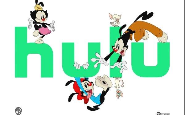 TV Show Animaniacs (2020) Wakko Warner Dot Warner Yakko Warner HD Wallpaper   Background Image