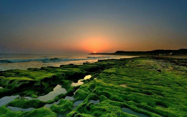 Earth Coastline Sea Sunset Nature Horizon Seascape HD Wallpaper   Background Image