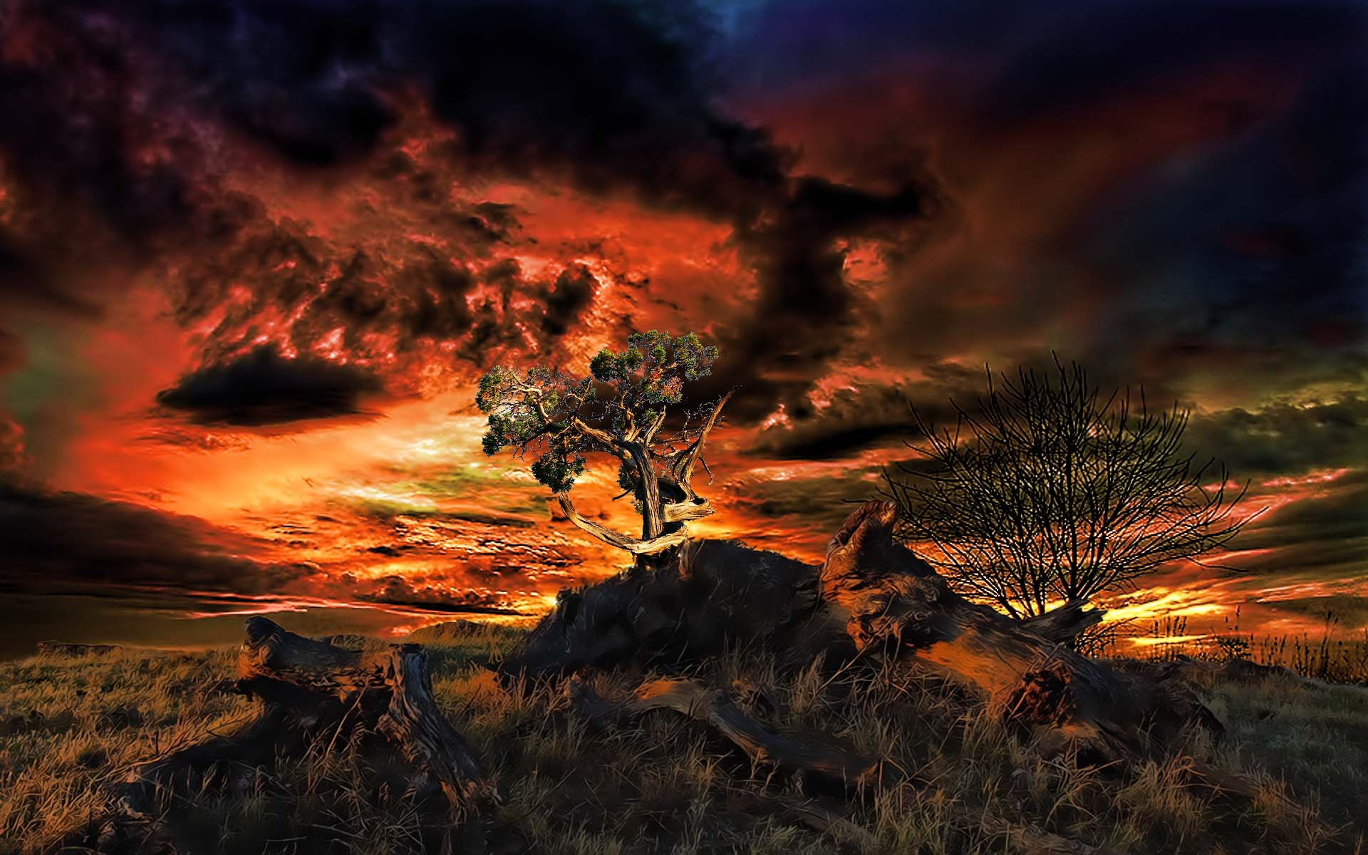 40 sunset hd wallpapers backgrounds wallpaper abyss - Wallpaper abyss categories ...