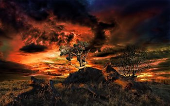 Artistisk - Sunset Wallpapers and Backgrounds ID : 113600