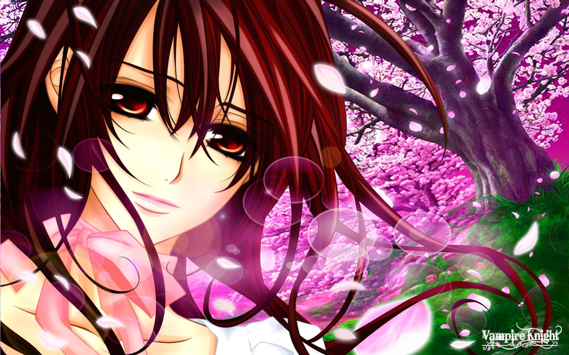 138 Vampire Knight HD Wallpapers
