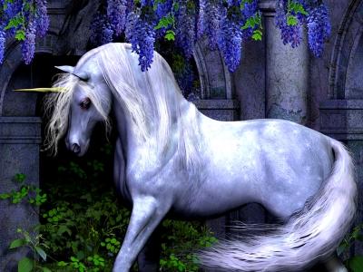 dans fond ecran licorne thumbbig-115462