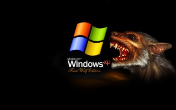 Windows - Preview