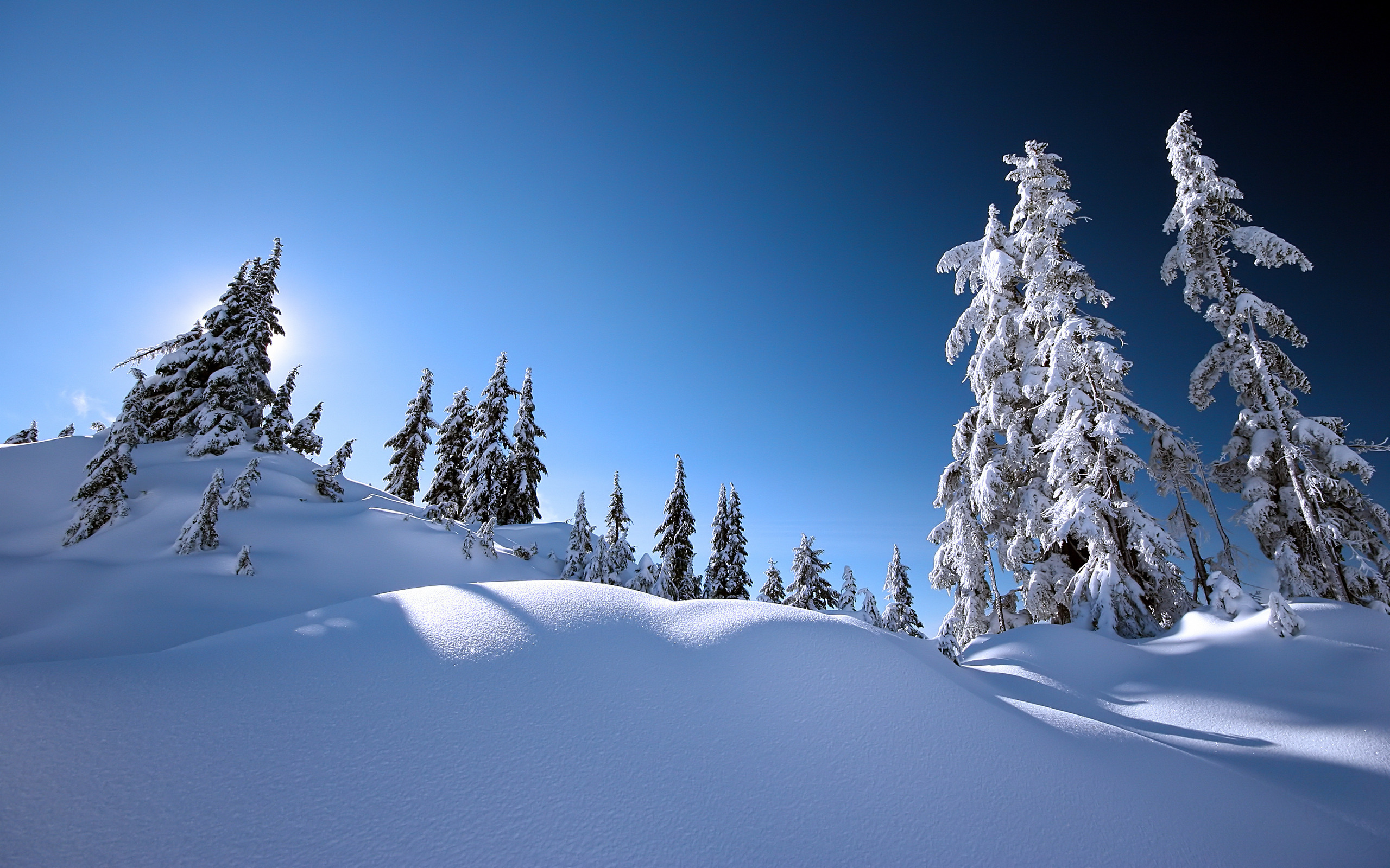 Earth - Winter  Snow Night Wallpaper