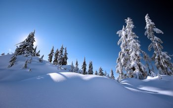 Earth - Winter Wallpapers and Backgrounds ID : 117040
