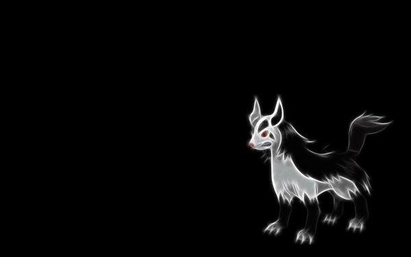 Anime Pokémon Mightyena Dark Pokémon HD Wallpaper | Background Image