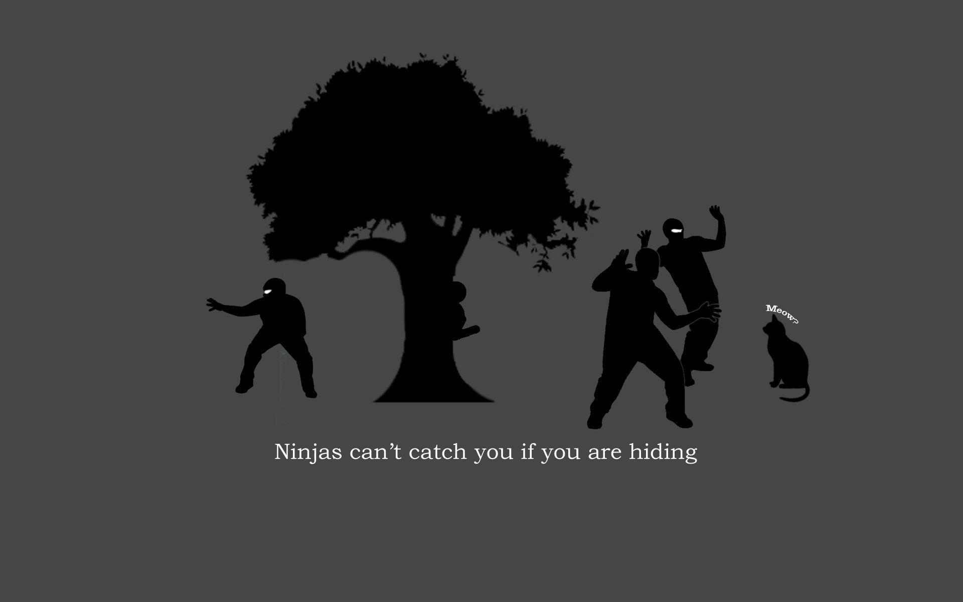 Humor - Ninja  Wallpaper