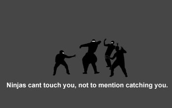 Humor - Ninja Wallpapers and Backgrounds ID : 120862