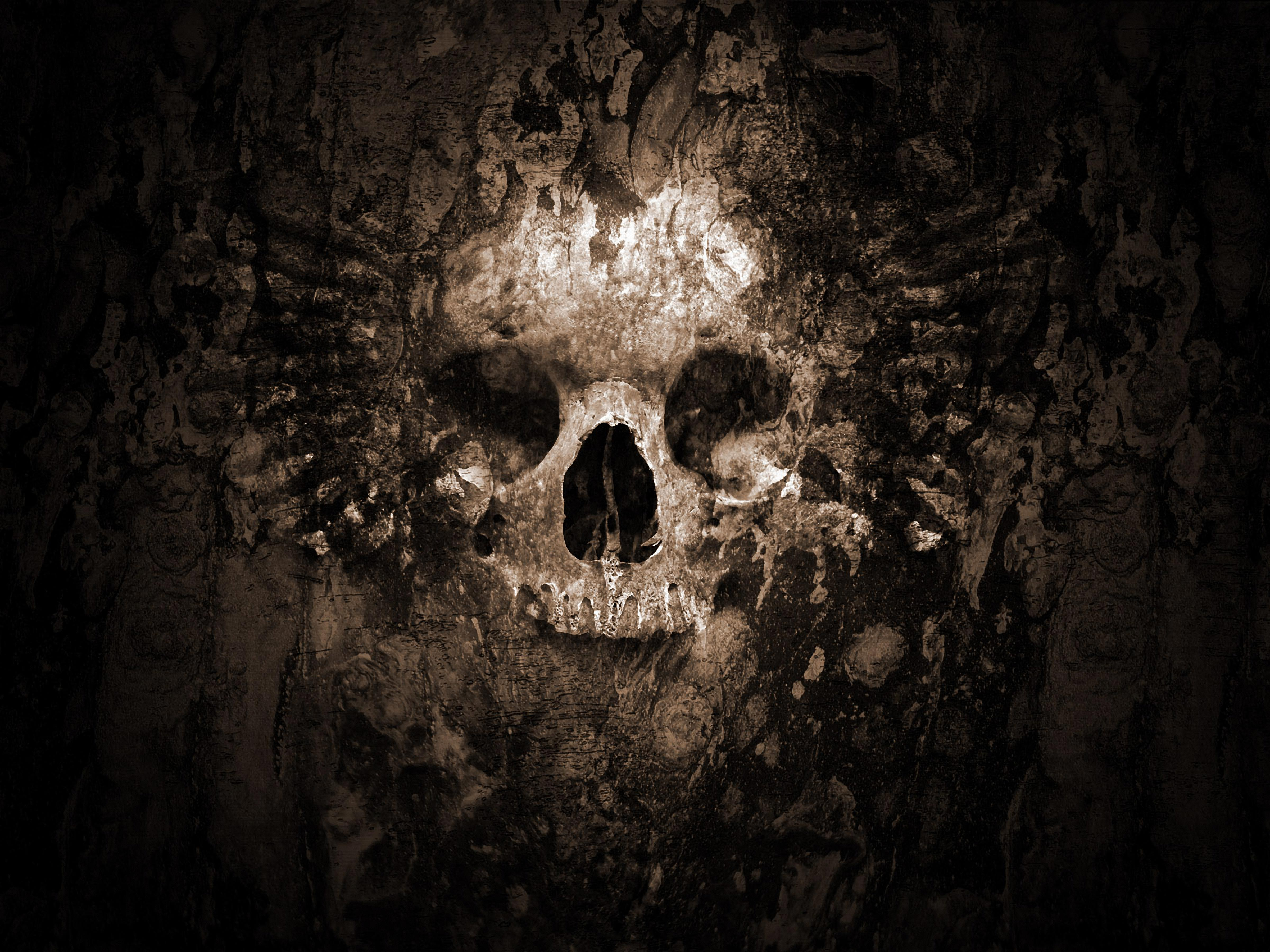 68 4k ultra hd skull wallpapers background images wallpaper abyss hd wallpaper background image id121830 voltagebd Choice Image