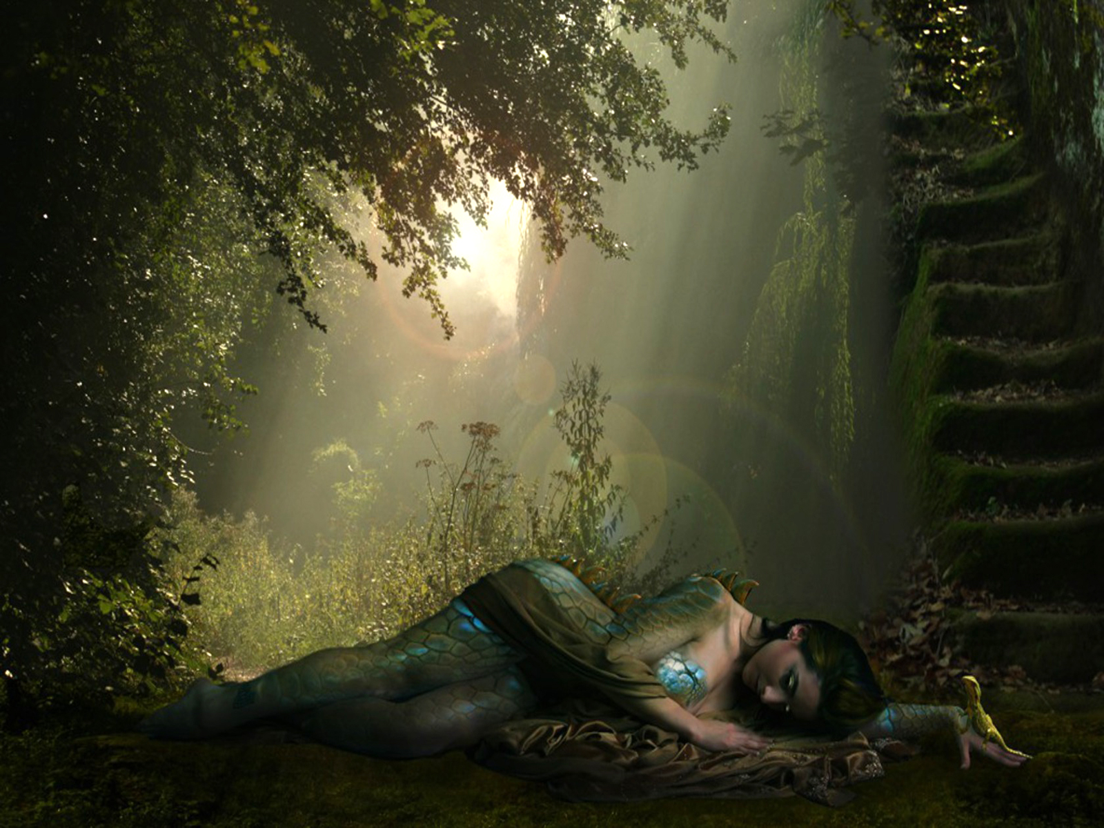 Fantasy - Drake  Warrior Fantasy Bakgrund