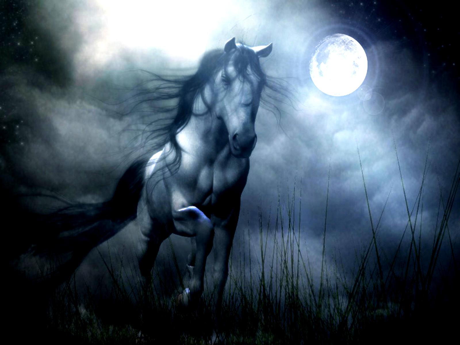 Fantasía - Horse  Fondo de Pantalla