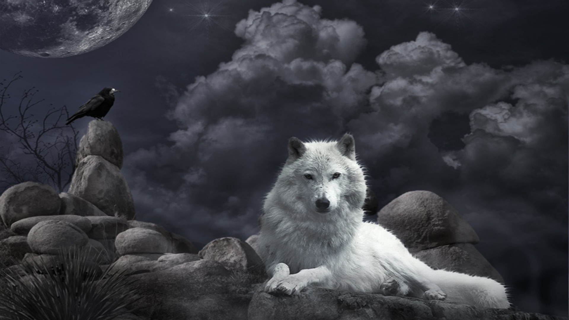 Night Guard Hd Wallpaper Background Image 1920x1080 Id