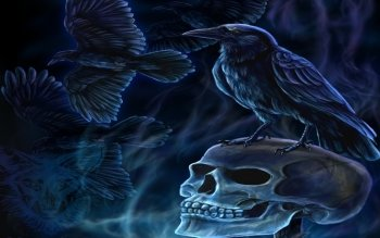 Dark - Skull Wallpapers and Backgrounds ID : 142062