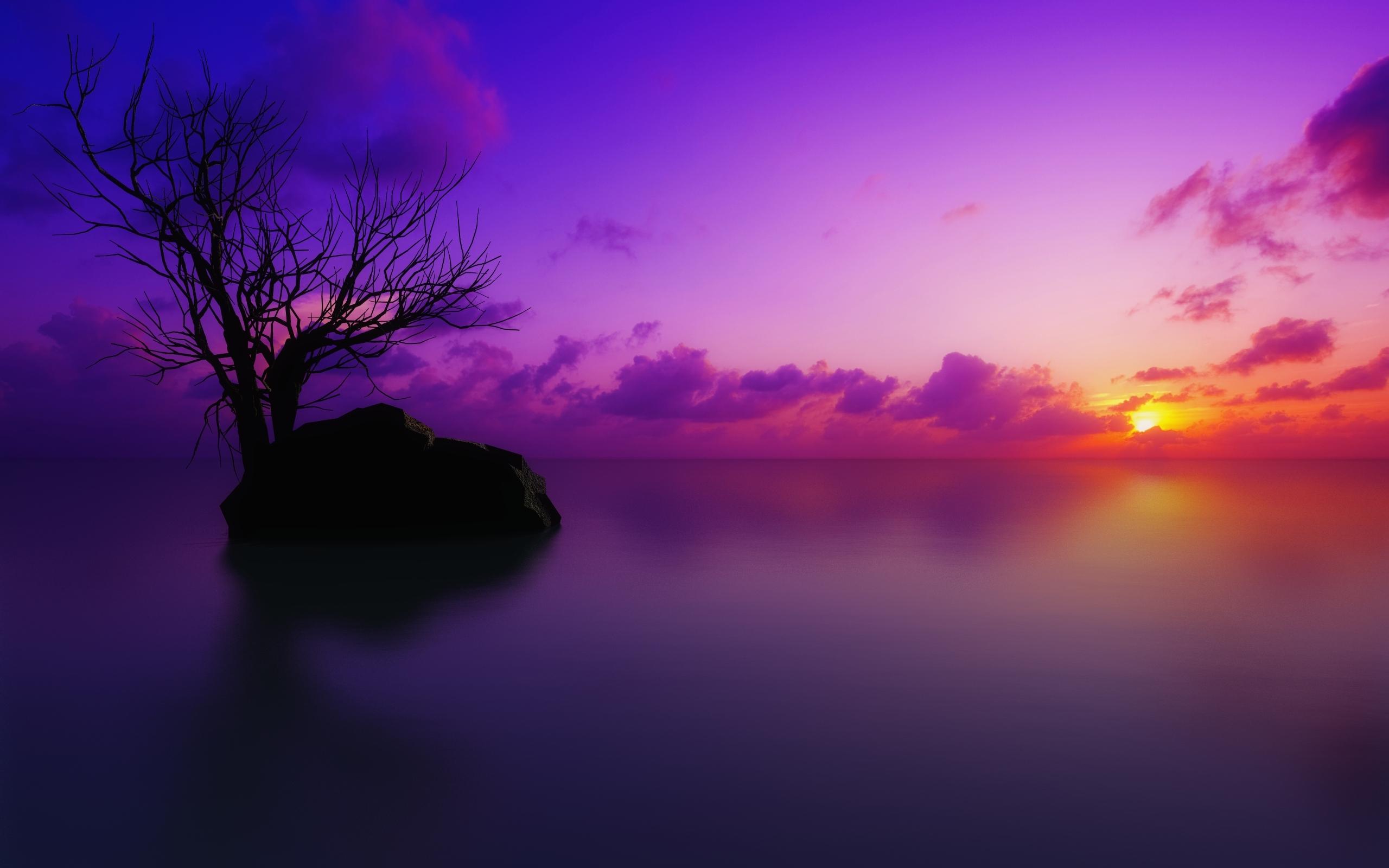 Aarde/Natuur - Scenisch  Zonsondergang Oceaan Pastel Boom Artistiek Paars Wolk Steen Wallpaper