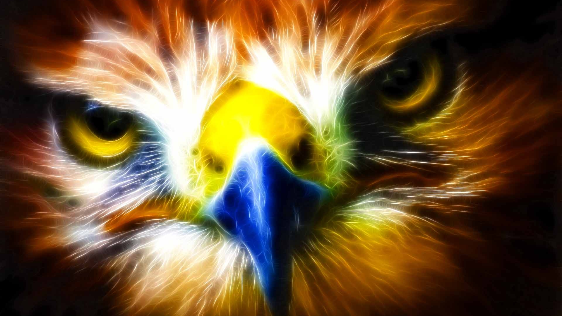 Eagle HD Wallpaper | Background Image | 1920x1080 | ID ...