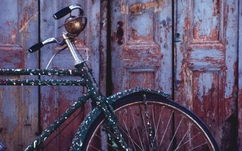 Vehicles - Bicycle Wallpapers and Backgrounds ID : 165960
