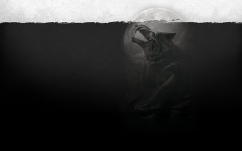 Dark - Werewolf Wallpapers and Backgrounds ID : 166550