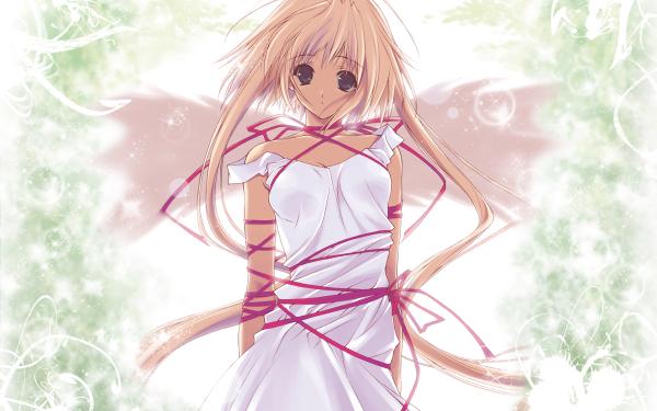 Anime Eve License Organization Angel HD Wallpaper   Background Image