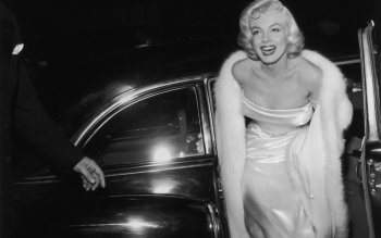 Celebridad - Marilyn Monroe Wallpapers and Backgrounds ID : 167660