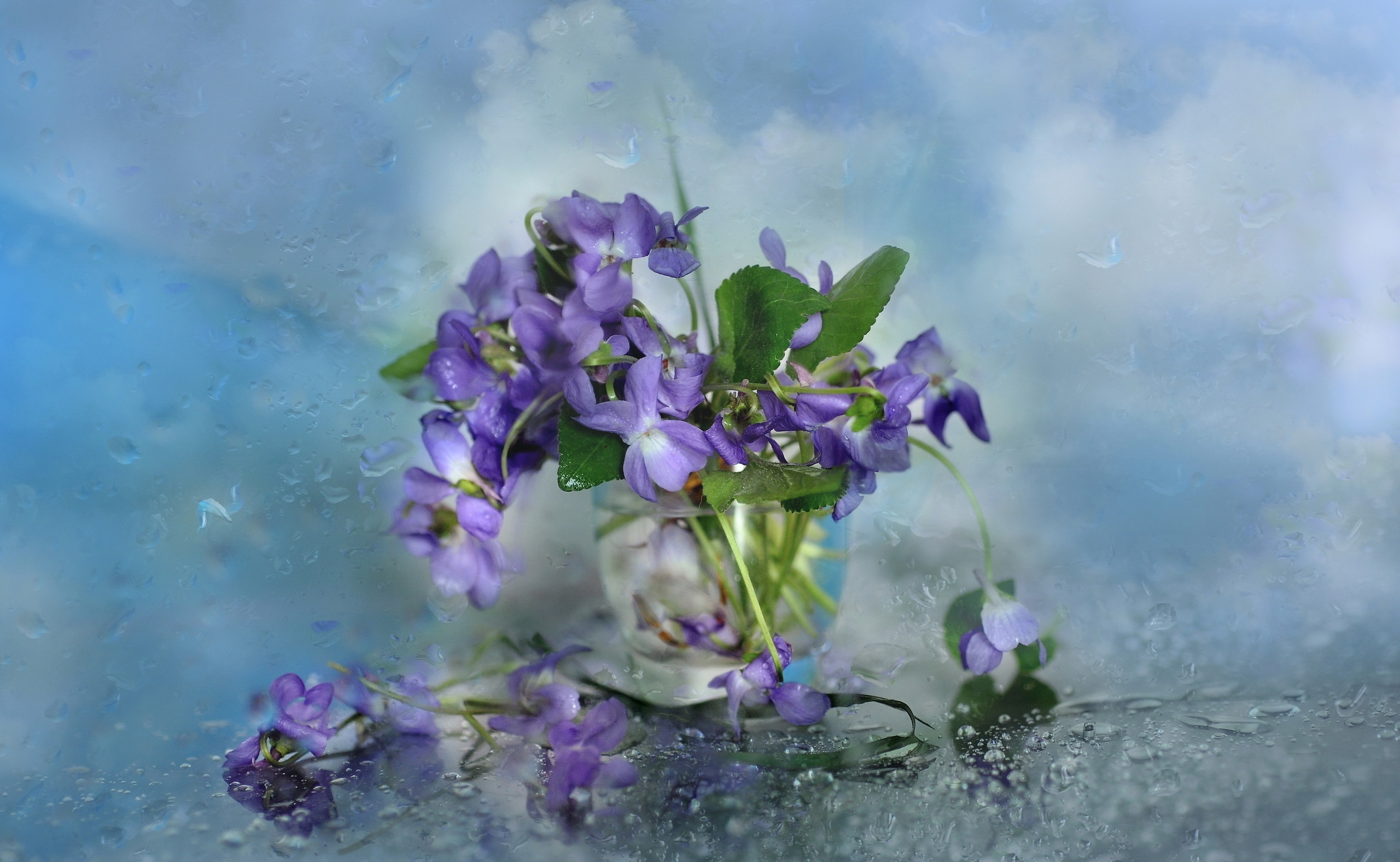 84 Still Life Hd Wallpapers Background Images Wallpaper Abyss