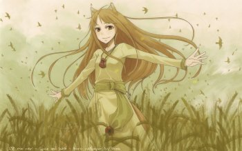 Anime - Spice And Wolf Wallpapers and Backgrounds ID : 177292