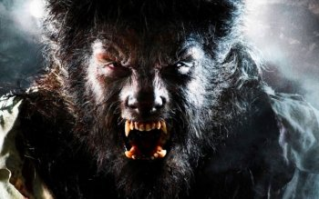 Donker - Werewolf Wallpapers and Backgrounds ID : 178660