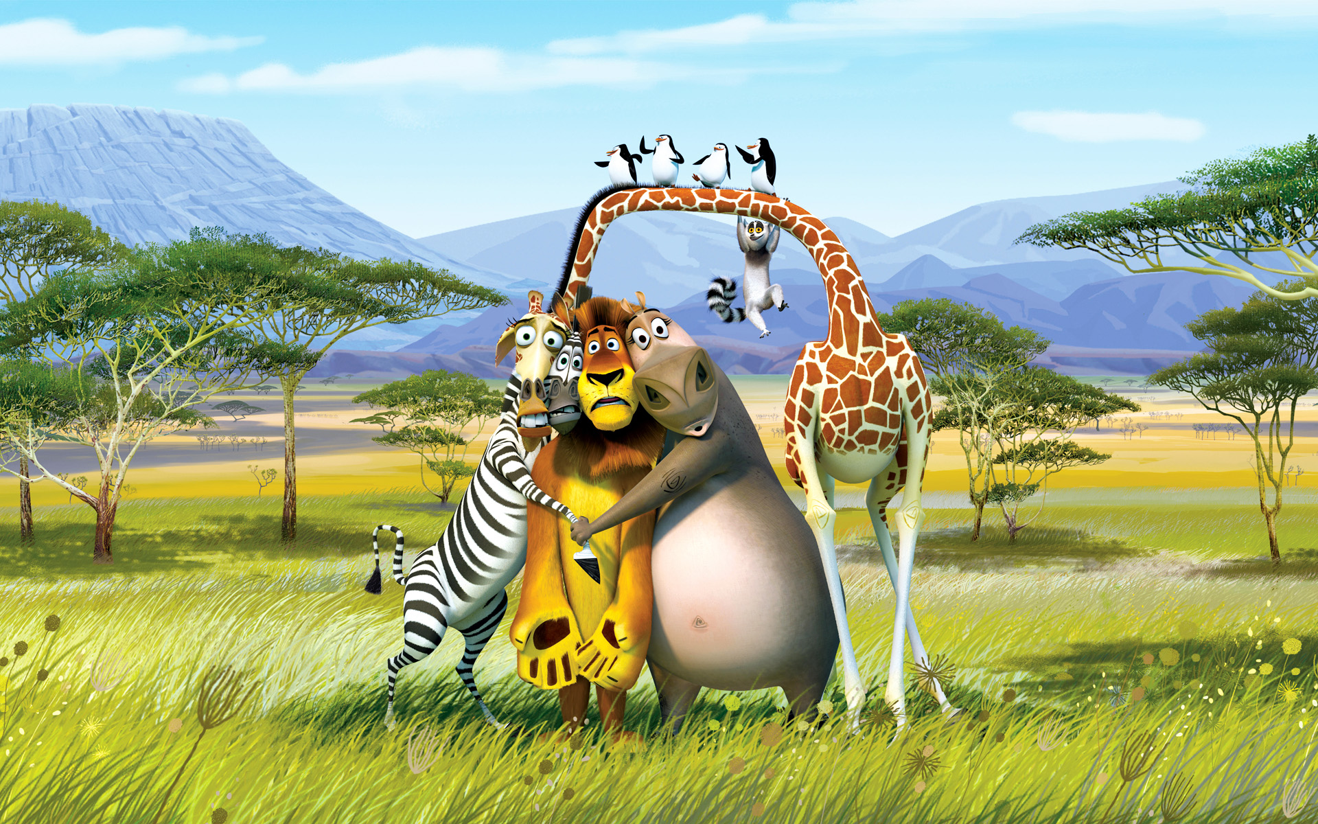 19 madagascar movie hd wallpapers background images - Madagascar wallpaper ...