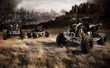 Vehicles - Can-Am Wallpapers and Backgrounds ID : 181652