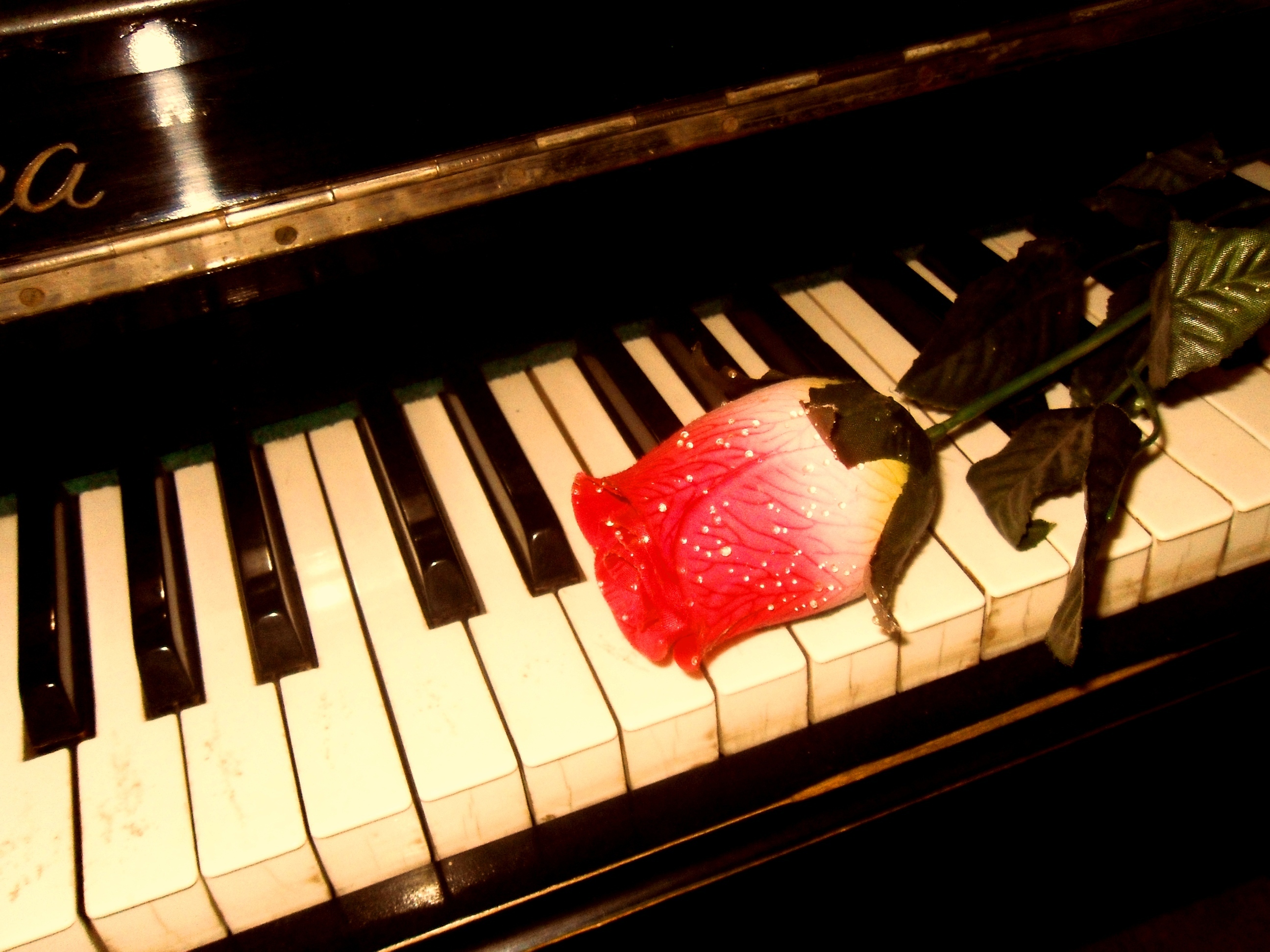 Piano hd wallpaper background image 2592x1944 id - Cool piano backgrounds ...