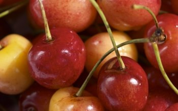 Alimento - Cherry Wallpapers and Backgrounds ID : 187642