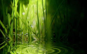 Earth - Water Drop Wallpapers and Backgrounds ID : 18962