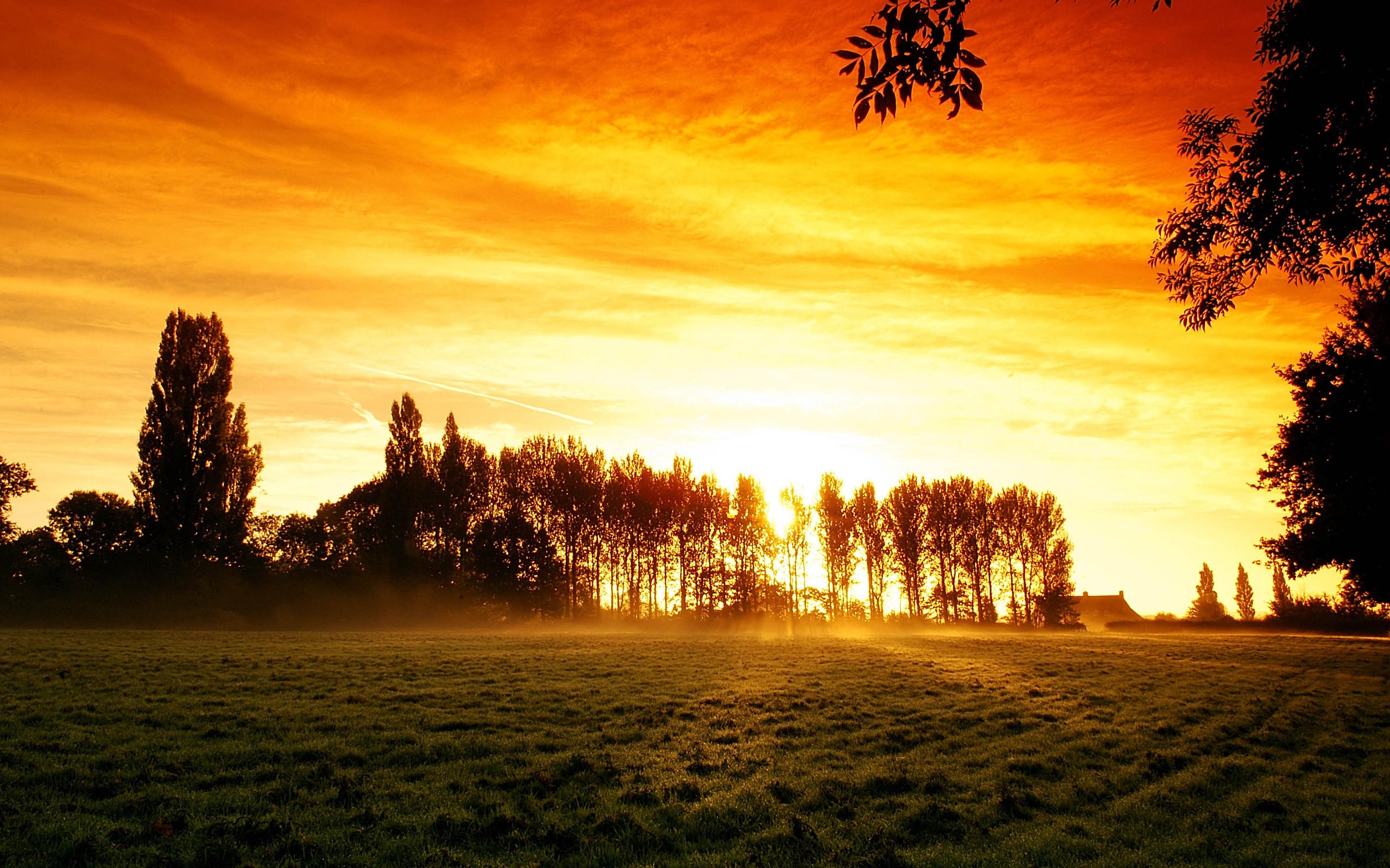 Sunrise Full HD Wallpaper and Background | 2560x1600 | ID ...