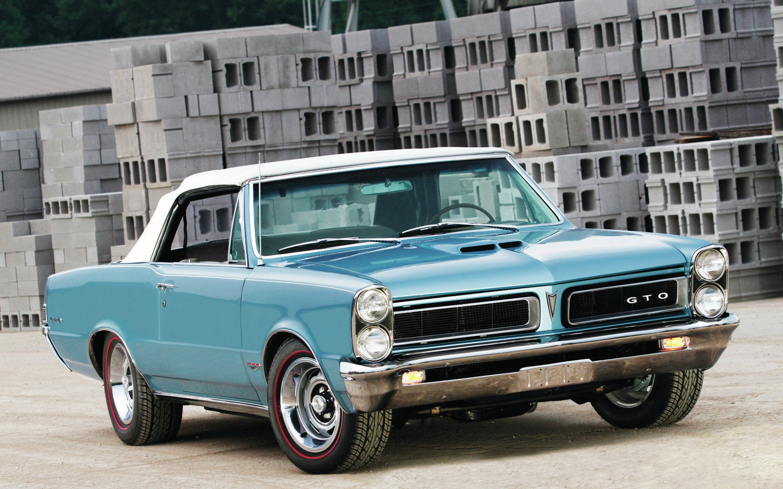 1965 Gto Wallpaper And Background Image 1600x1000 Id