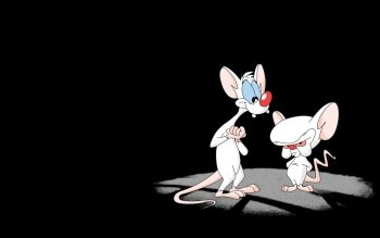 Cartoni - Pinky And The Brain Wallpapers and Backgrounds ID : 192842