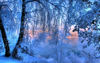 Jorden - Winter Wallpapers and Backgrounds ID : 198592