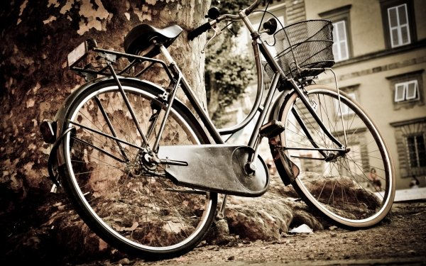 Vehicles Bicycle Italy HD Wallpaper | Background Image