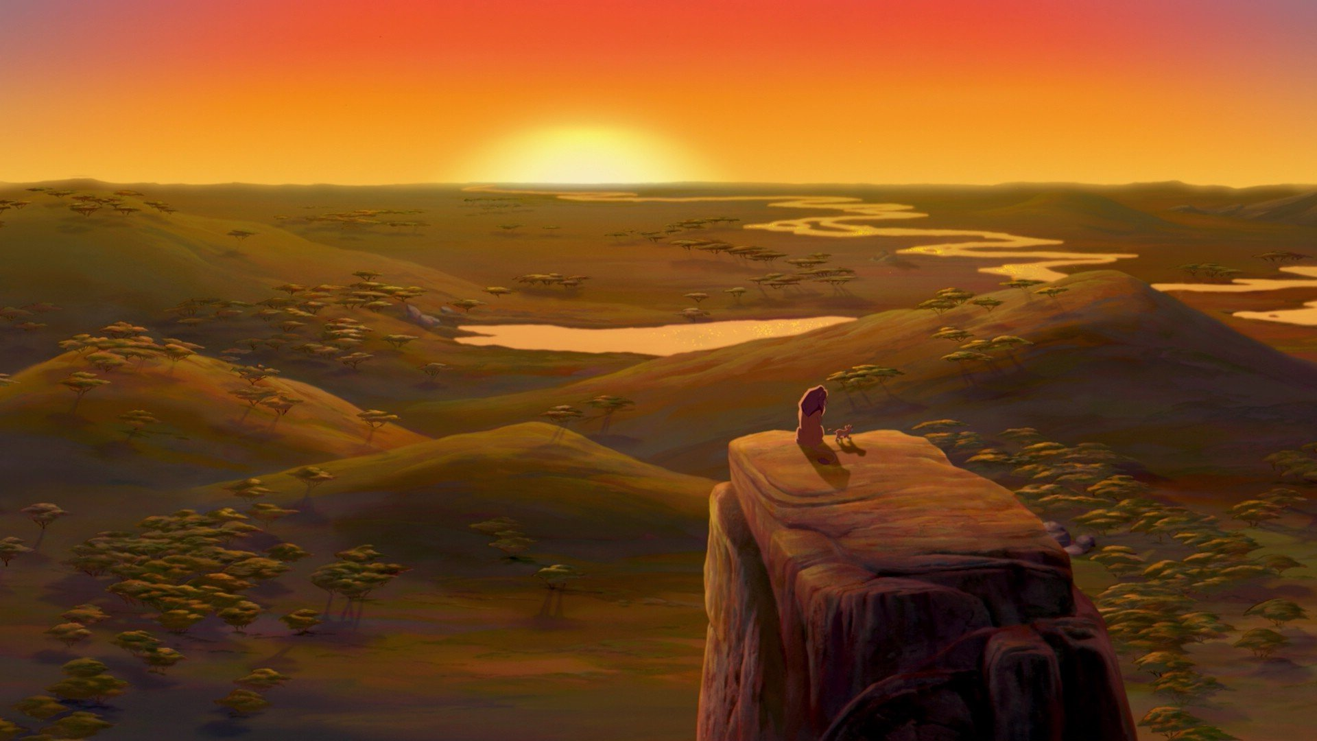 The Lion King Hd Wallpaper Background Image 1920x1080 Id